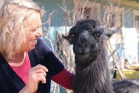 Thunderbird Lodge Retreat Owner Lori Portillo with her pet llama, Jewel. (Photo courtesy of Thunderbird Lodge Retreat/Angela Barker)
