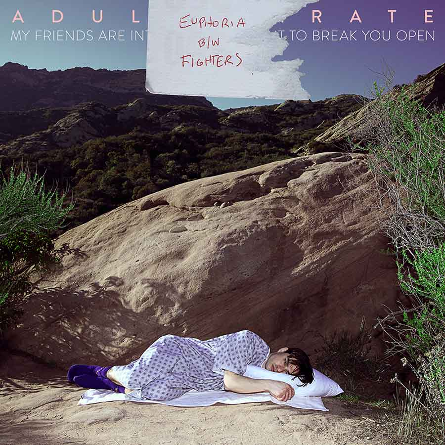 Adult-Karate - Euphoria- (Single Cover Art)