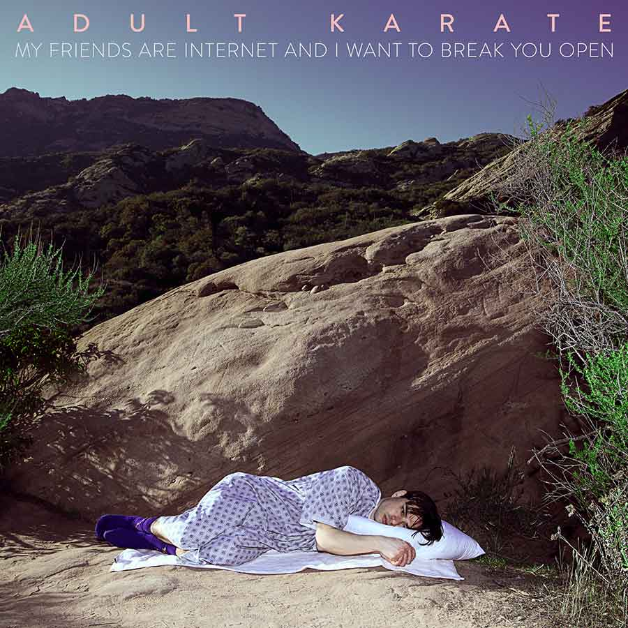 Adult Karate - My Friends Are Internet - (Album Cover Art)